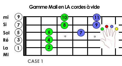 Origine du blues Blues du Mali - Gamme LA
